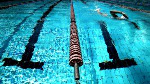 מסלולי שחיה