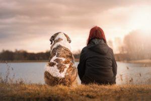 5 טיפים לפני שלוקחים את גור הכלבים לאילוף בפעם הראשונה